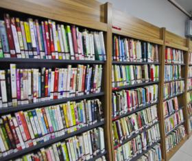 标准钢木书架